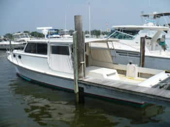 Charter fishing boats in annapolis md penny sue charters for Annapolis fishing charters
