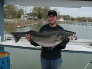 World Class Sport Fishing on the Chesapeake Bay